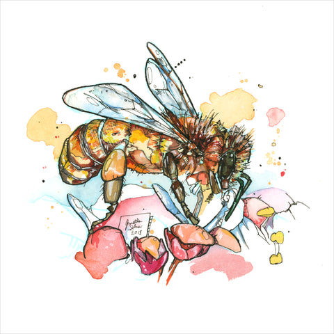 """Honeybee""- 8x10 Reproduction print"