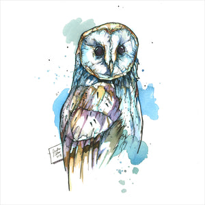 """Barn Owl"" - 8x10 Reproduction print"