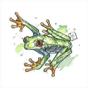 """Tree Frog"" - Original 8x10 Illustration (SOLD)"