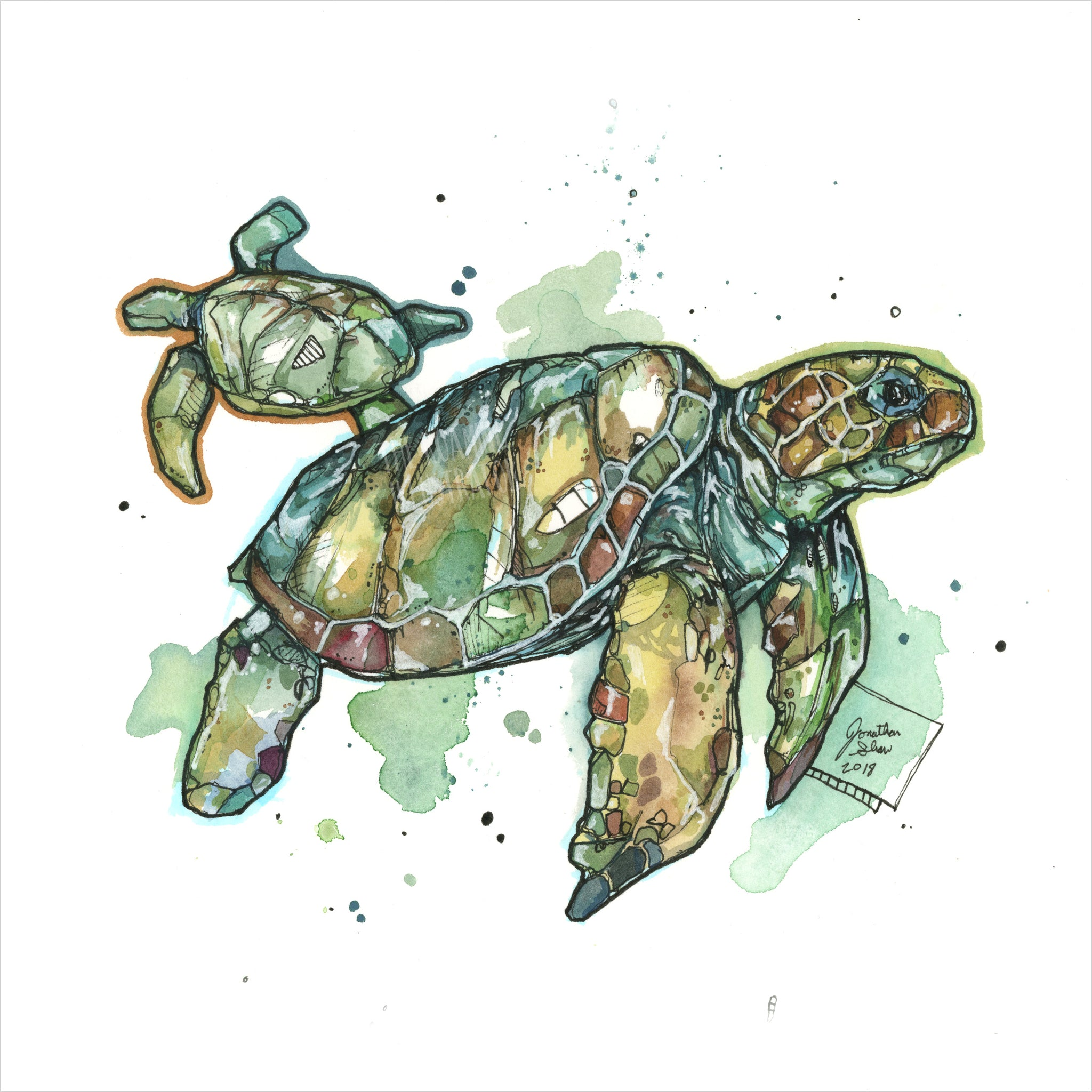 """Sea Turtles"" - 8x10 Reproduction print"