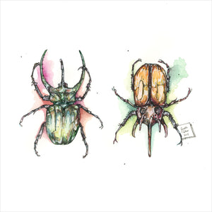 """Beetles"" - Original 8x10 Illustration"