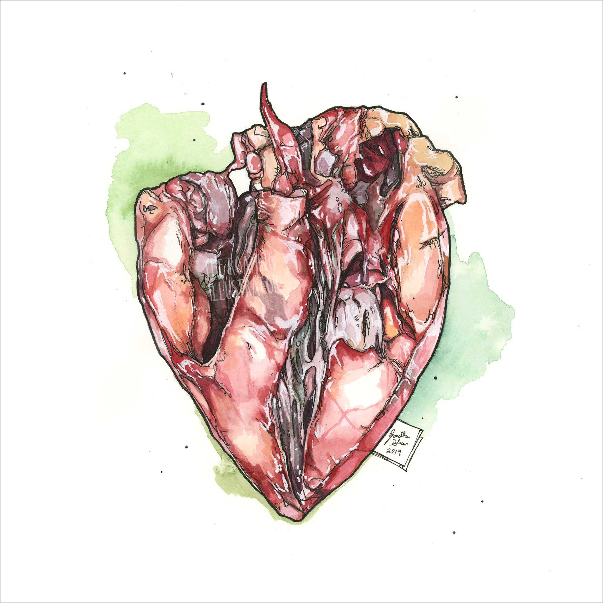 """Heart"" - Original 8x10 Illustration (SOLD)"