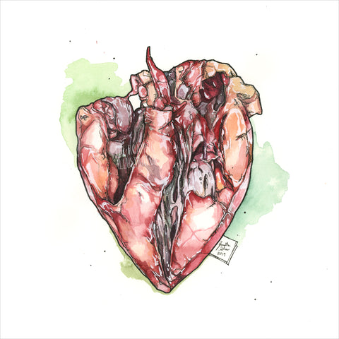 """Heart"" - 8x10 Reproduction Print"