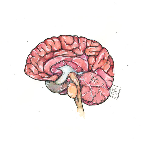 """Brain"" - Original 8x10 Illustration (SOLD)"