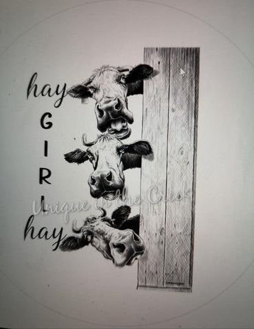 "276.  Hay Girl Hay (cow) ""VINYL"" image center"