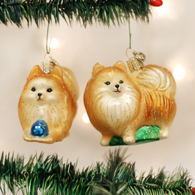 Pomeranian (a) Ornament