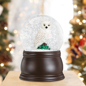 Great White Owl Snow Globe