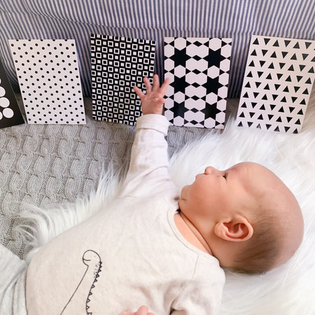 Newborn Flash Cards