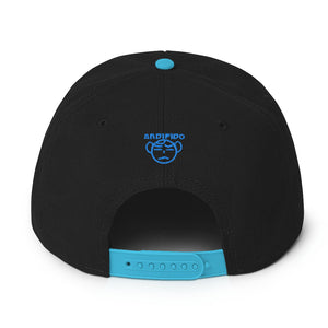 ANDIFIDO Teal & Black Snapback Hat - Andifido