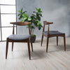 Sandra Mid Century Modern Dining Chairs (Set of 2)