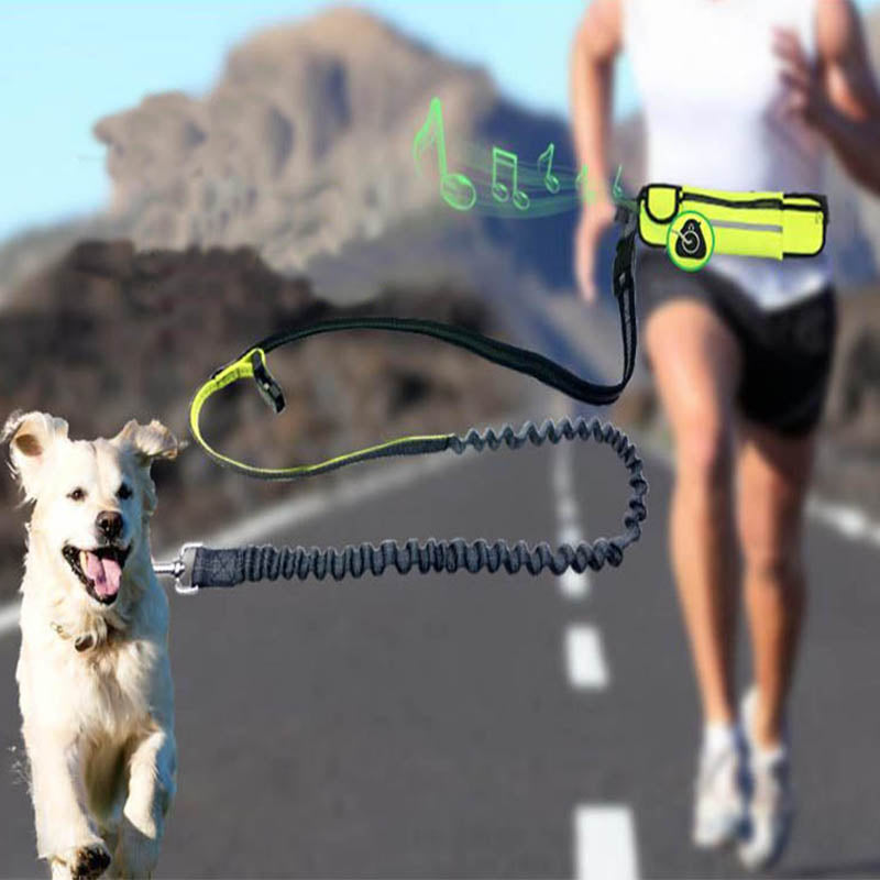 Hands Free Waist Bag Dog Leash - shopaholicsonlyco