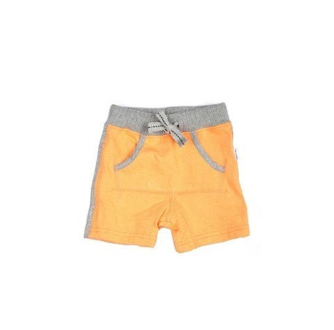 Claesen's Short Orange