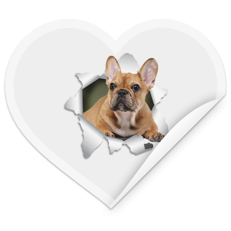 FRENCH BULLDOG 3D Heart Sticker