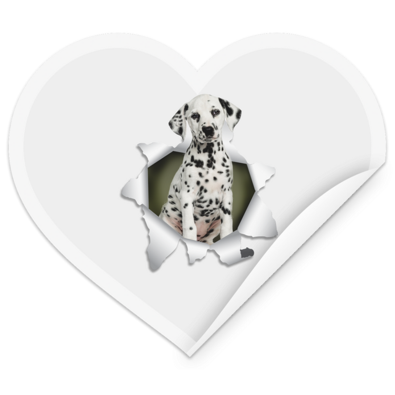 DALMATIAN 3D Heart Sticker
