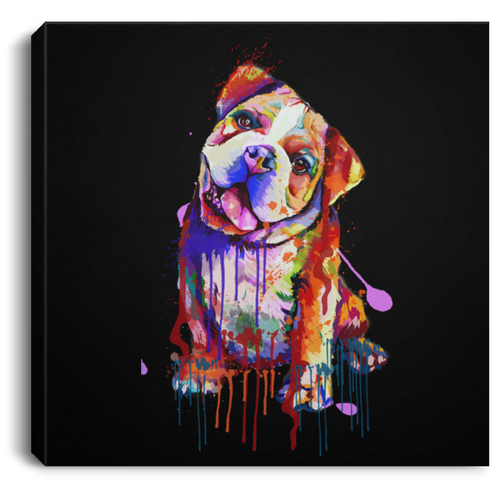 Hand Painted Bull Dog Square Canvas .75in Frame