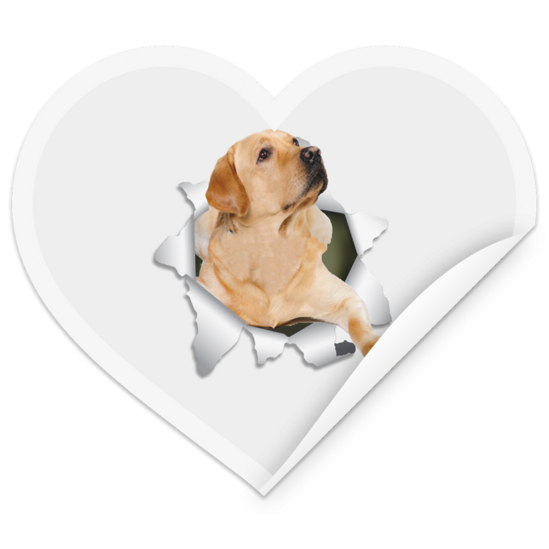 LABRADOR RETRIEVER 3D Heart Sticker