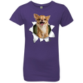 CHIHUAHUA 3D Girls' Princess T-Shirt