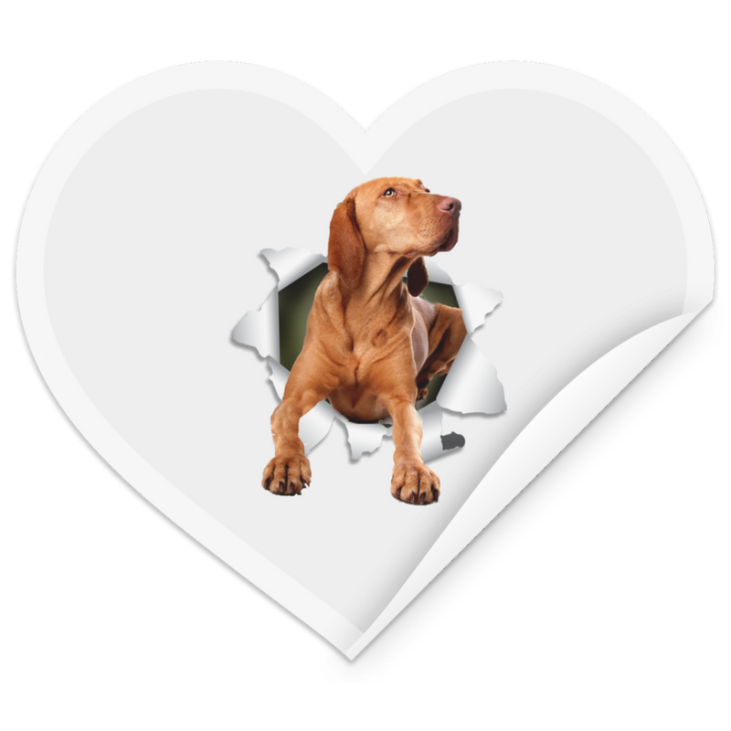 VIZSLA 3D Heart Sticker