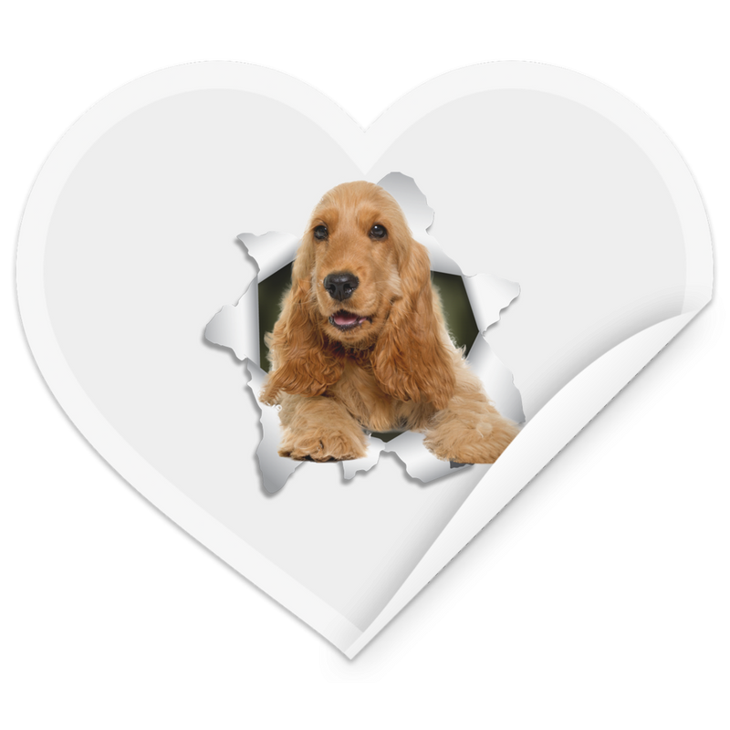 ENGLISH COCKER 3D Heart Sticker