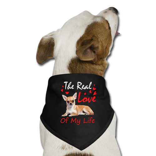 The_real_love_of_my_life Dog Bandana - black