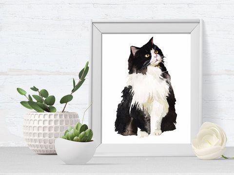 Black and White Cat Pet Portrait