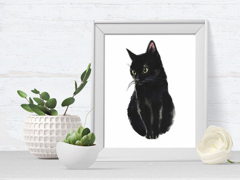 Black Cat Pet Portrait