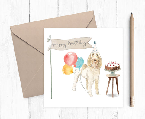 Spinone Italiano Birthday Card
