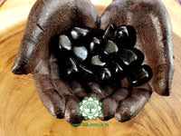 Shungite small tumbled stone .75 inch