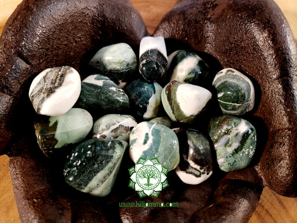 Green Sardonyx large tumbled crystal 1 inch