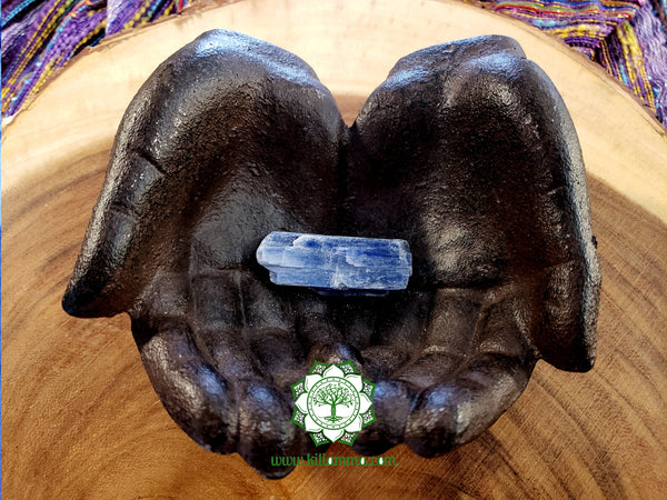 Blue Kyanite Blade medium/large rough stone 2x.8x.4 inches (BK11)