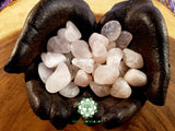 Rose Quartz A Grade medium tumbled crystal .75 inch