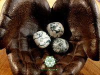 Tree Agate large tumbled stone 1.25 inch