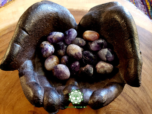 Black Amethyst medium/large tumbled stone .8-.9 inches