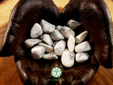 Howlite medium tumbled crystal 1 inch