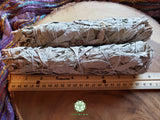 Large California White Sage (Salvia Apiana) Bundle 9 inches