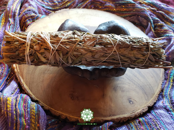 Large Black Sage (Dream Weed, Mugwort, Magical Sage) Bundle approximately 8~9 inches