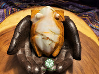 Large Hand-Carved Pakistani Onyx Frog 4 inches long (POA04)