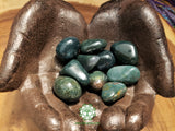 Bloodstone large tumbled stone 1.25 inches