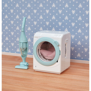 Laundry & Vacuum Cleaner