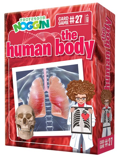 Professor Noggins The Human Body