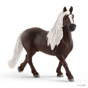 BLACK FOREST STALLION
