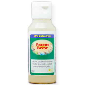 Potent Brew for Birds  Live liquid probiotic 50ml size
