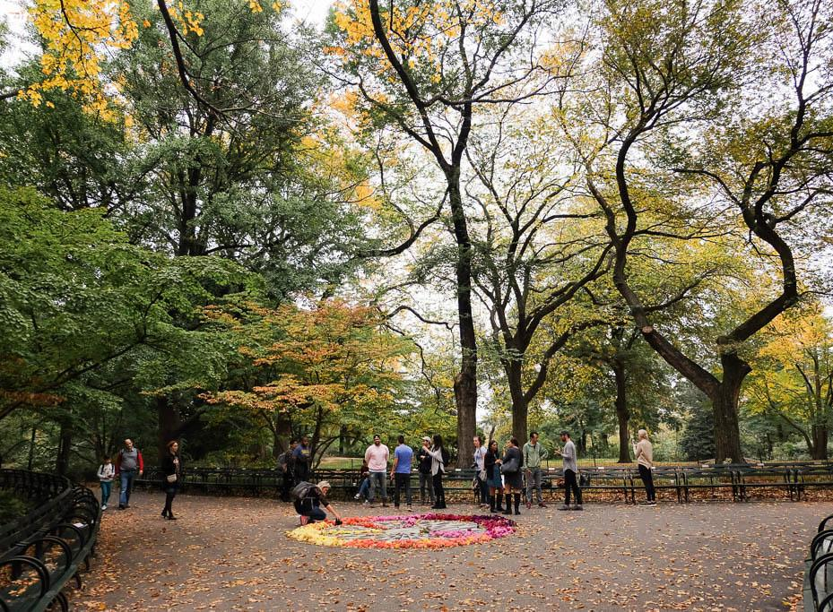 The First Fall Colors: Our Central Park Photo Walk with Mat Rick & Moment