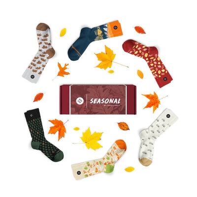 Seasonal Box: Fall 20