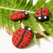 Load image into Gallery viewer, Ladybird Rocks Mini Eco Bags