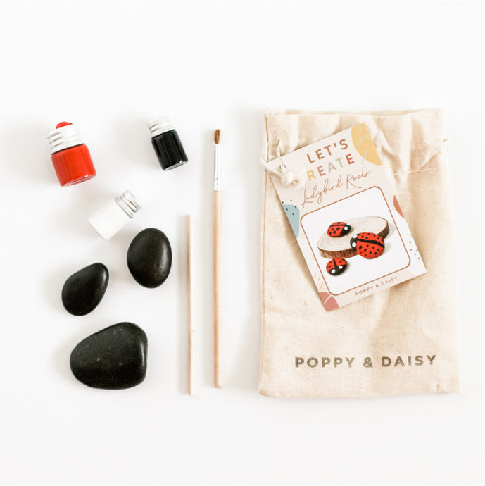 Ladybird Rocks Mini Eco Bags