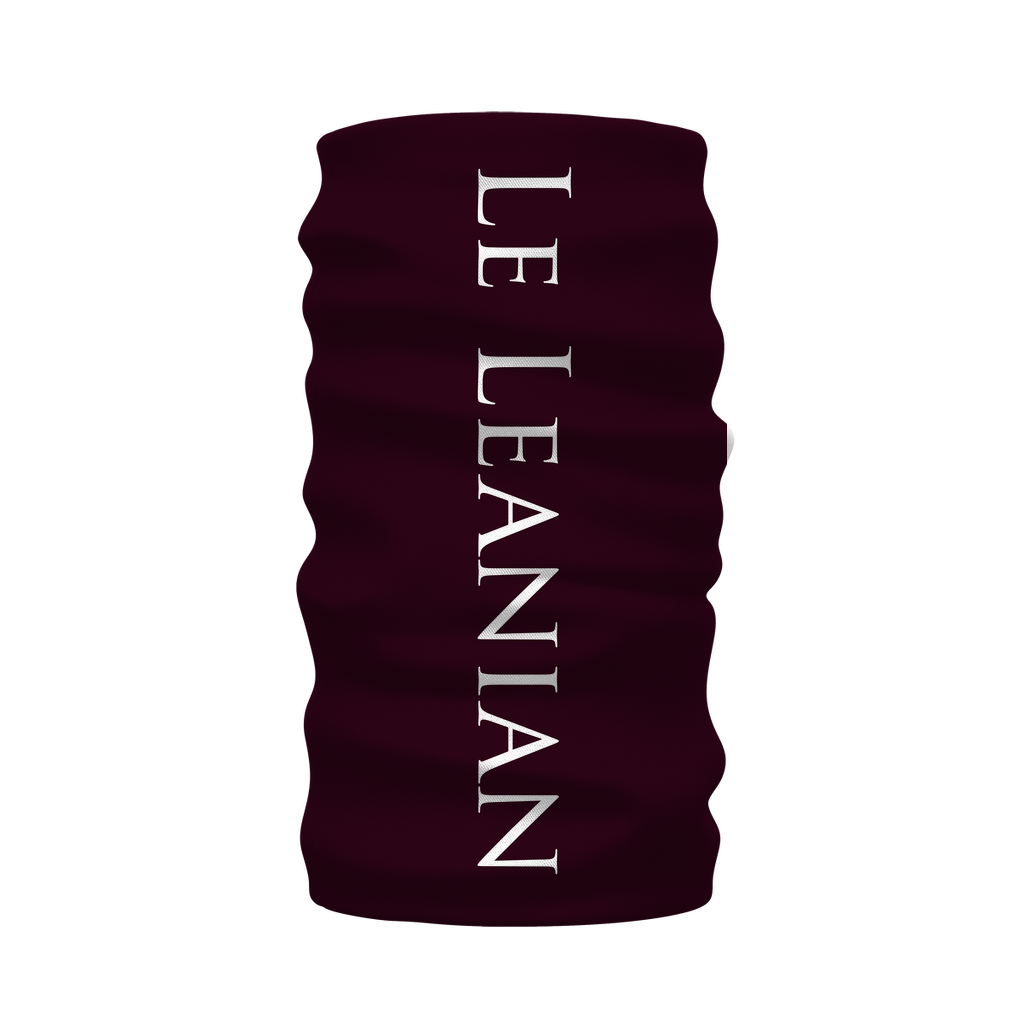 Skull Cathedral- French Gothic Neck Warmer- Morf Scarf in Eggplant Wine | Le Leanian™