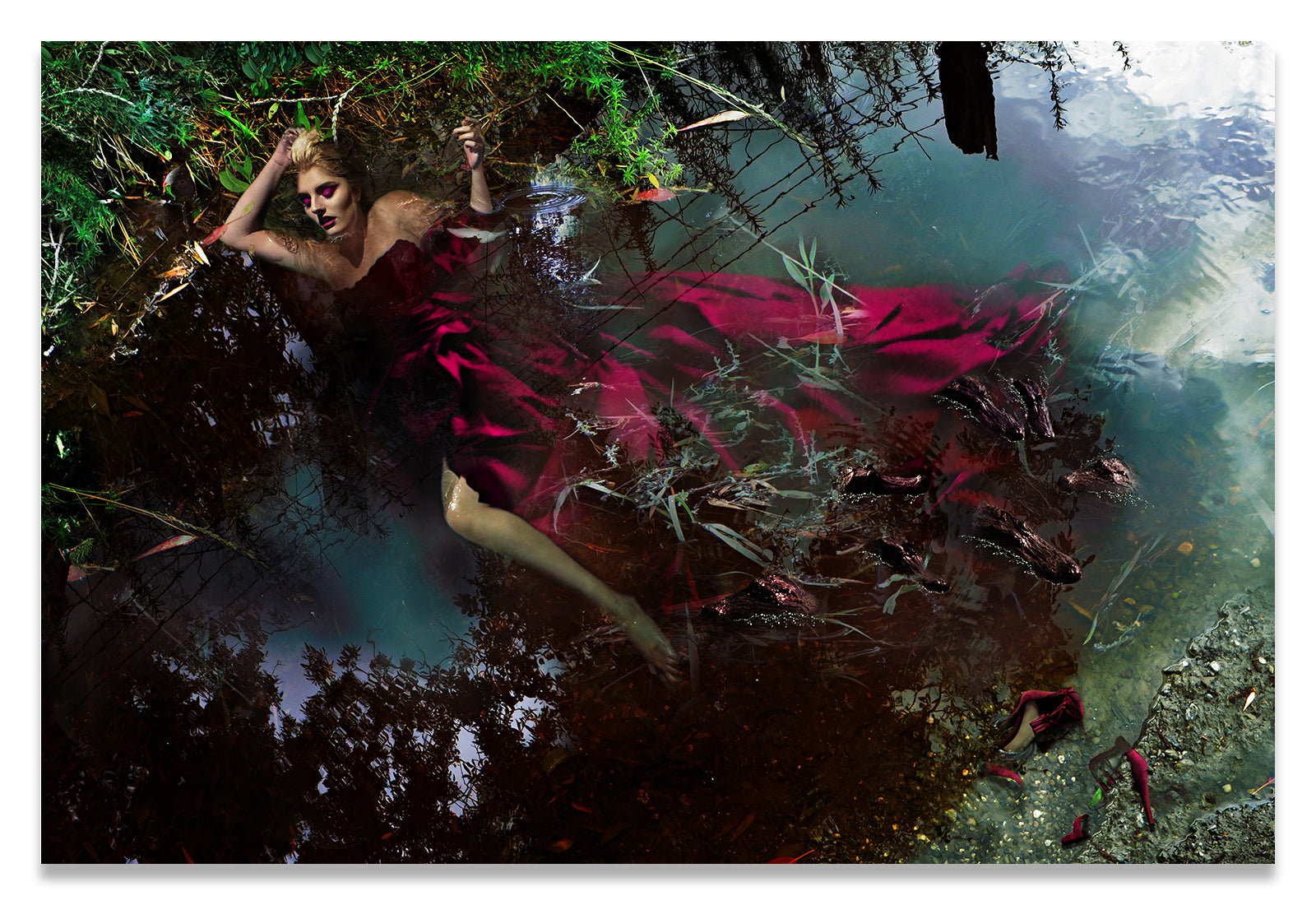 Woman in a Crimson Red Ballgown Swimming With Alligators.
