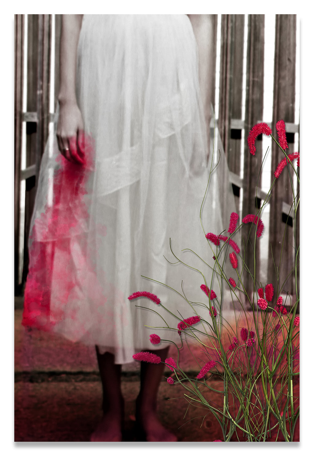 Woman in a Vintage White Lace Dress, cropped at waist, Standing With a Bloody Hand Dripping Down Her Dress in front of a Gate-Metal Print-Aluminum Print