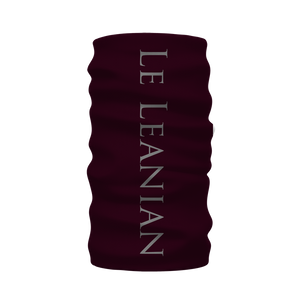 Skull Gilded Honeycomb & Magenta Stars-French Gothic Neck Warmer- Morf Scarf on Muted Eggplant Wine | Le Leanian™